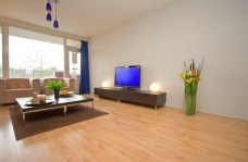 Picture of rental at Bankrashof 1183-ns in Amsterdam